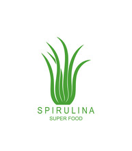 Underwater Seaweed Spirulina Logo. Isolated Underwater Seaweed Spirulina On White Background