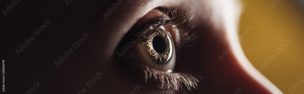 Fototapety, obrazy: close up view of human eye looking away in darkness, panoramic shot