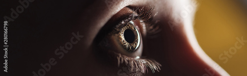 Photo sur Aluminium Macro photographie close up view of human eye looking away in darkness, panoramic shot