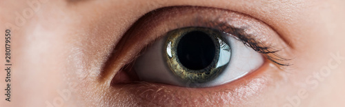 close up view of woman clear eye looking at camera, panoramic shot Canvas Print