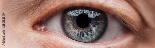 Obraz close up view of human blue eye looking at camera, panoramic shot - fototapety do salonu