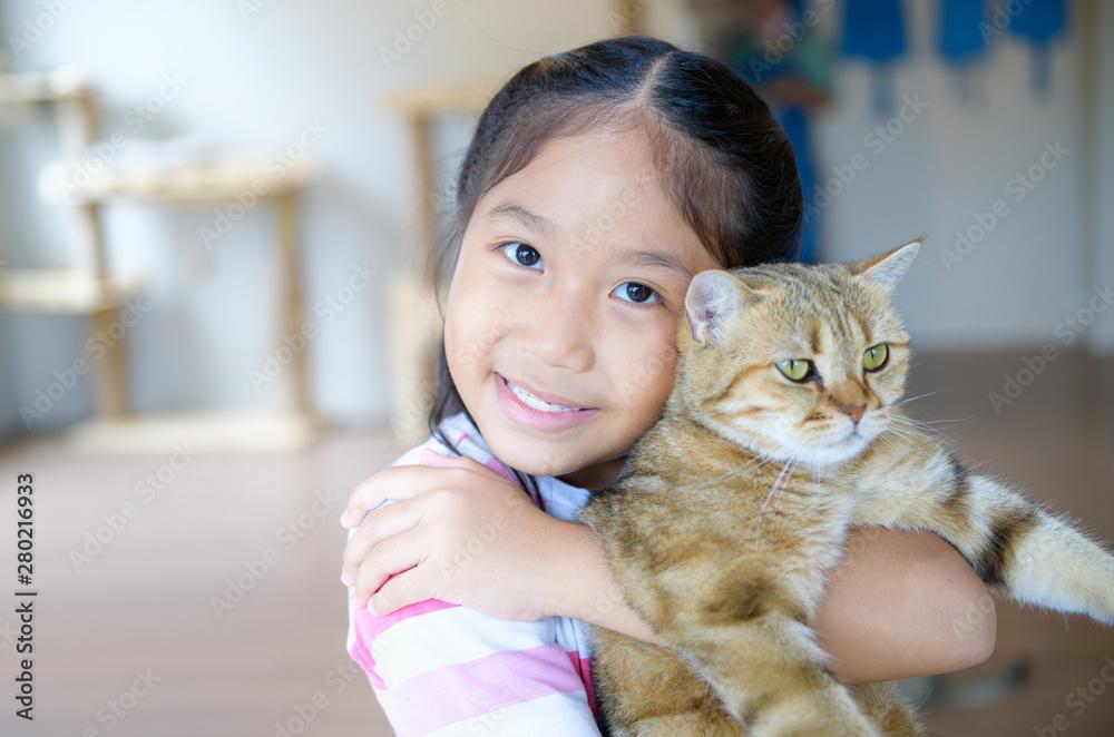 Fototapeta Cute girl hug and play scottish fold cat