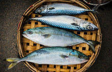 Fresh Fish In A Basket At A Fish Market, Vietnam, Southeast Asia