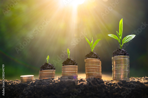 Fotografie, Obraz  Money growth Saving money