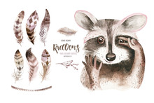 Watercolor Boho Floral Isolated Raccoon With Feather. Bohemian Natural Background: Leaves, Feathers, Flowers, Artistic Decoration Illustration. Save The Date, Weddign Design, Nursery Illustration