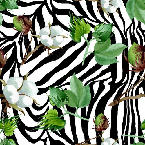 bialy-bawelniany-kwiatowy-kwiat-botaniczny-zestaw-ilustracji-akwarela-jednolite-tlo-wzor