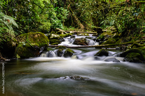 Fototapety, obrazy: small waterfall with blurred water on the rocks in the brazilian rainforest with tropical trees around