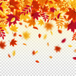 Autumn falling leaves. Nature background with red, orange, yellow foliage. Flying leaf. Season sale. Vector illustration.