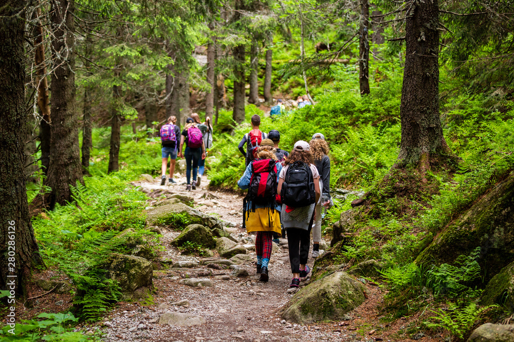 Fototapety, obrazy: Young hikers in forest heading towards High Tatras peak