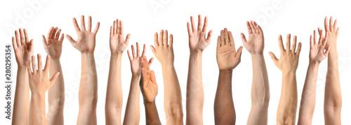 Fototapeta African-American man extending hand for shake on white background, closeup obraz