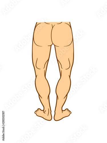 po hintern arsch nackt mann muskeln muckis körper kräftig kraft bodybuilder star Wallpaper Mural