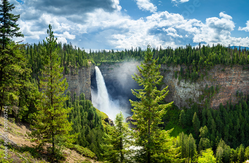 Wall Murals Forest river Helmcken falls Canada during day