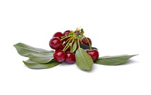Sweet Cherries Isolated On The...