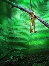 Vintage Gold Key In Forest Tre...
