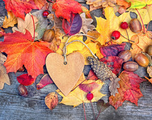 Autumn Background With Heart B...