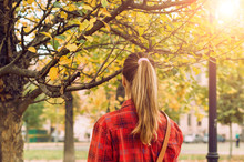 Beautiful Long Pony Tail Of A Girl In The Park. Enjoy Autumn Foliage Beauty On A Sunny Day.