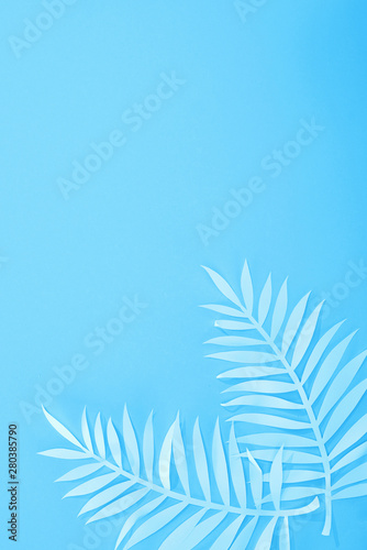 Fotografía  top view of paper leaves on blue minimalistic background with copy space
