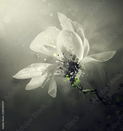 drawing of an abstract flower against a dark background
