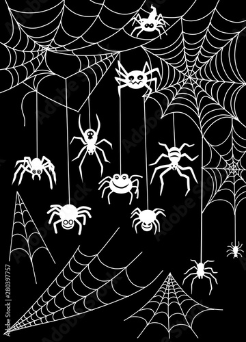 Black spider and torn web Canvas Print
