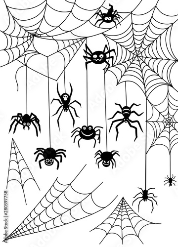 Black spider and torn web Wallpaper Mural