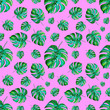 canvas print picture - Watercolor seamless pattern with monstera leaves on pink background. Tropical leaves wrapping paper design. Hand painted illustration.