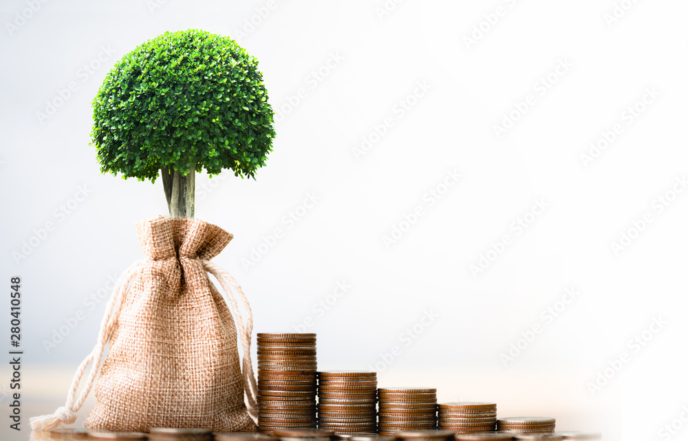 Fototapeta Coins in sack and small plant tree. Pension fund, 401K, Passive income. savings and making money. Investment and retirement. Business investment growth concept. Risk management.