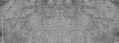 Texture of gray carpet background. Canvas Print