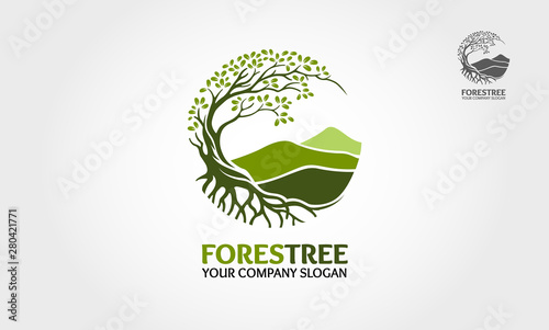 Fotografia Forest Tree vector logo