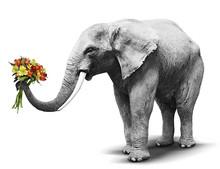 Black And White Elephant Handi...