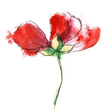 Single Withering Red Flower On Black Stalk With Falling Petals Isolated On White Background. Watercolor Hand Drawn Painting On Paper Texture. Brush Stroke Floral Illustration With Wet Ink Effect.