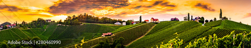 Foto auf AluDibond Honig Panorama of vineyards hills in south Styria, Austria