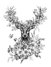 Deer With Flowers, Berries And...
