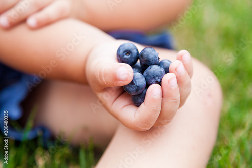 Cute little girl eating fresh berries on warm and sunny summer day. Close up. Selective focus. Fresh healthy organic food for small kids. Family activities in summer - 280480335