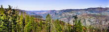 Panoramic View Of Areas Of Yos...