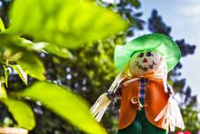 Scarecrow Doll In The Garden
