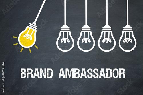 Brand Ambassador Wallpaper Mural