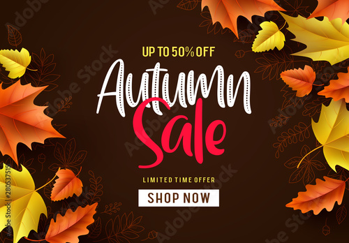 Stickers pour porte Echelle de hauteur Autumn sale vector background. Fall season banner design with autumn sale and discount text and colorful maple and oak leaves in brown pattern background. Vector illustration.