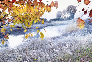Fototapeta Rzeki i Jeziora The first frosts in the autumn days. Grass and flowers in hoarfrost on the river bank in the fog in the early morning. Beautiful morning view with grass in hoarfrost.