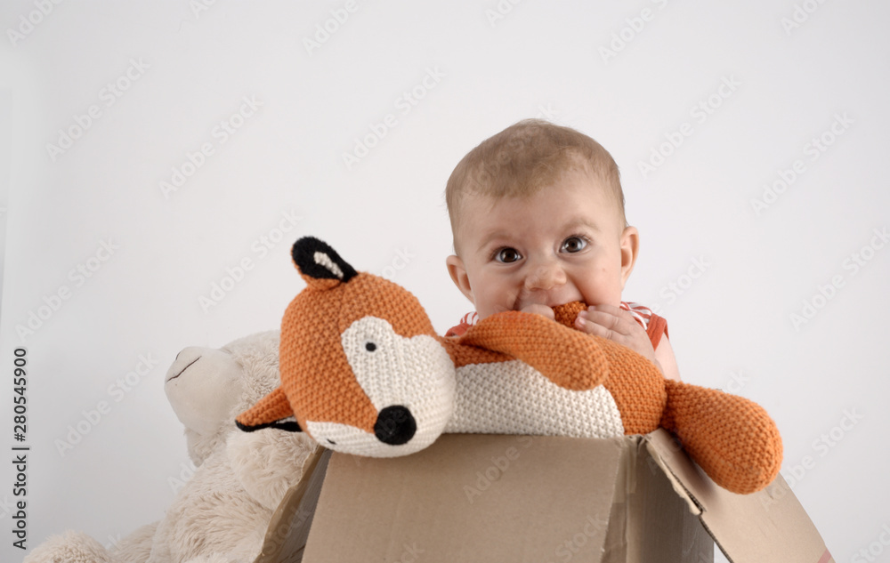 Fototapety, obrazy: small baby girl in a box with teddies