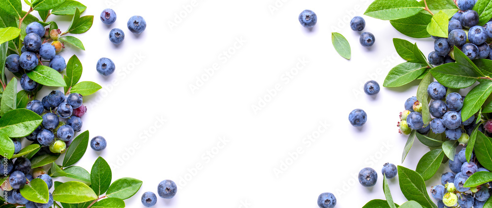 Fototapety, obrazy: Blueberries and leaves