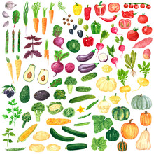 Different Colorful Vegetables ...