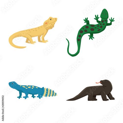Photo Vector design of animal and reptile icon