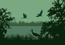 Realistic Illustration Of Wetland Landscape With River Or Lake, Water Surface And Birds. Stork Flying Under Green Morning Sky, Vector