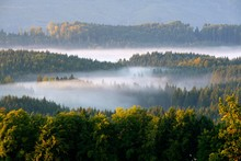 Morning Fog Over The Forests A...