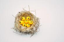 Bolas De Lotería En Un Nido De Aves Natural
