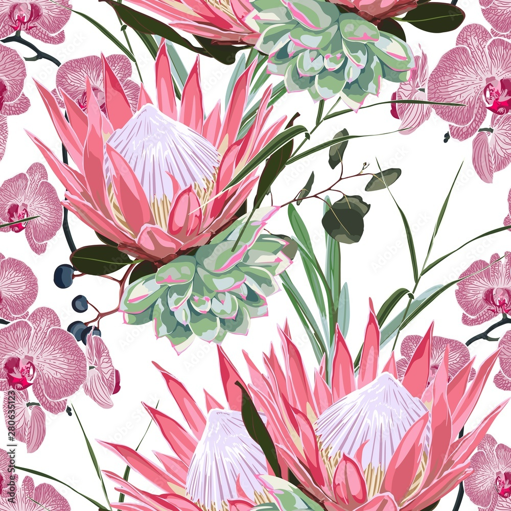Nature seamless pattern. Hand drawn tropical summer background: succulent, herbs and pink protea, orchid flowers. White background.