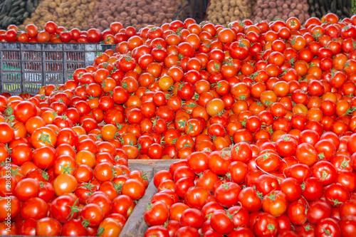 Tomaten im Souk el Had