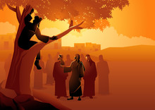 Zacchaeus Climbed Up Into A Sy...