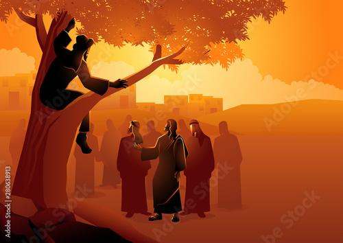 Fotografie, Obraz Zacchaeus climbed up into a sycamore tree