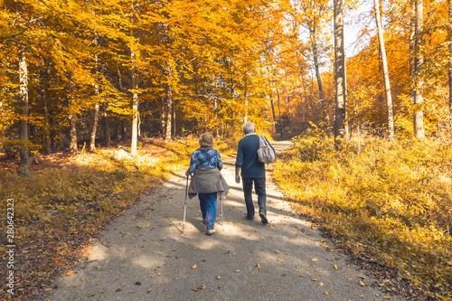Foto auf Leinwand Grau Two elderly people walking in the autumn forest
